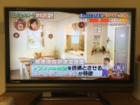 【テレビ出演しました。】